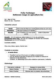 Fiche technique betterave rouge en agriculture bio - Chambre d agriculture haute vienne ...