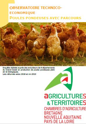 Observatoire technico economique poules pondeuses avec - Chambre d agriculture haute vienne ...
